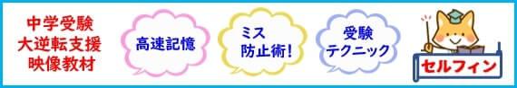 中学受験 自宅でインターネット・オンラインプロ指導 社会 理科のフラッシュ高速暗記DVD プロ家庭教師の算数 国語長文読解テクニック 添削通信講座・【脳プレス】・計算ミス防止・CD教材 |セルフィン