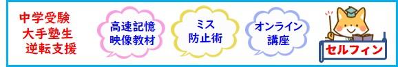 中学受験 プロ家庭教師の社会・理科高速暗記DVD及び算数・国語読解オンライン講座 セルフィン