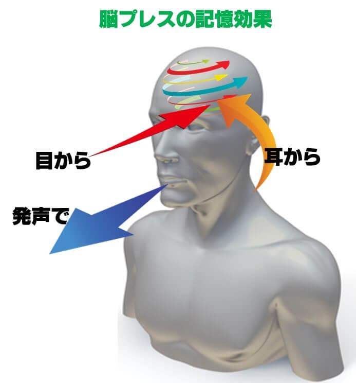 脳プレスの記憶効果